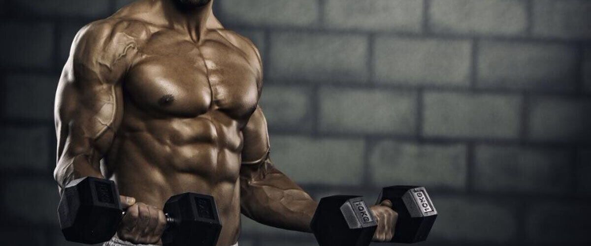 One Tip To Dramatically Improve Your forum bodybuilding