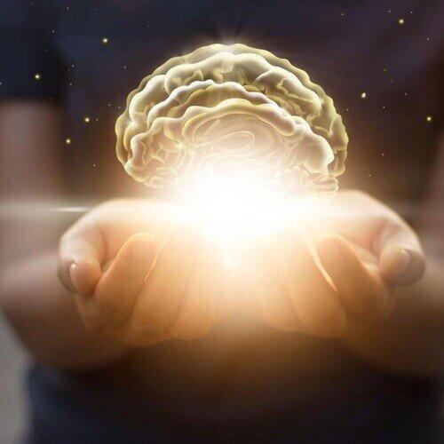 ਅਲਫ਼ਾ ਲਿਪੋਇਕ ਐਸਿਡ (ਅਲਾ) ਦੀ ਅਖੀਰ ਗਾਈਡ 2020 ਵਿਚ