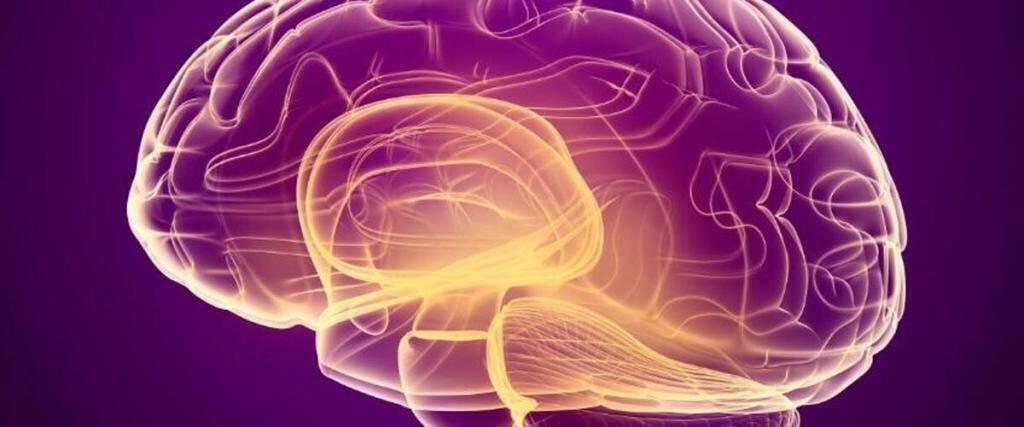 పైరోలోక్వినోలిన్ క్వినోన్ (PQQ) తీసుకోవడం వల్ల టాప్ 5 ప్రయోజనాలు